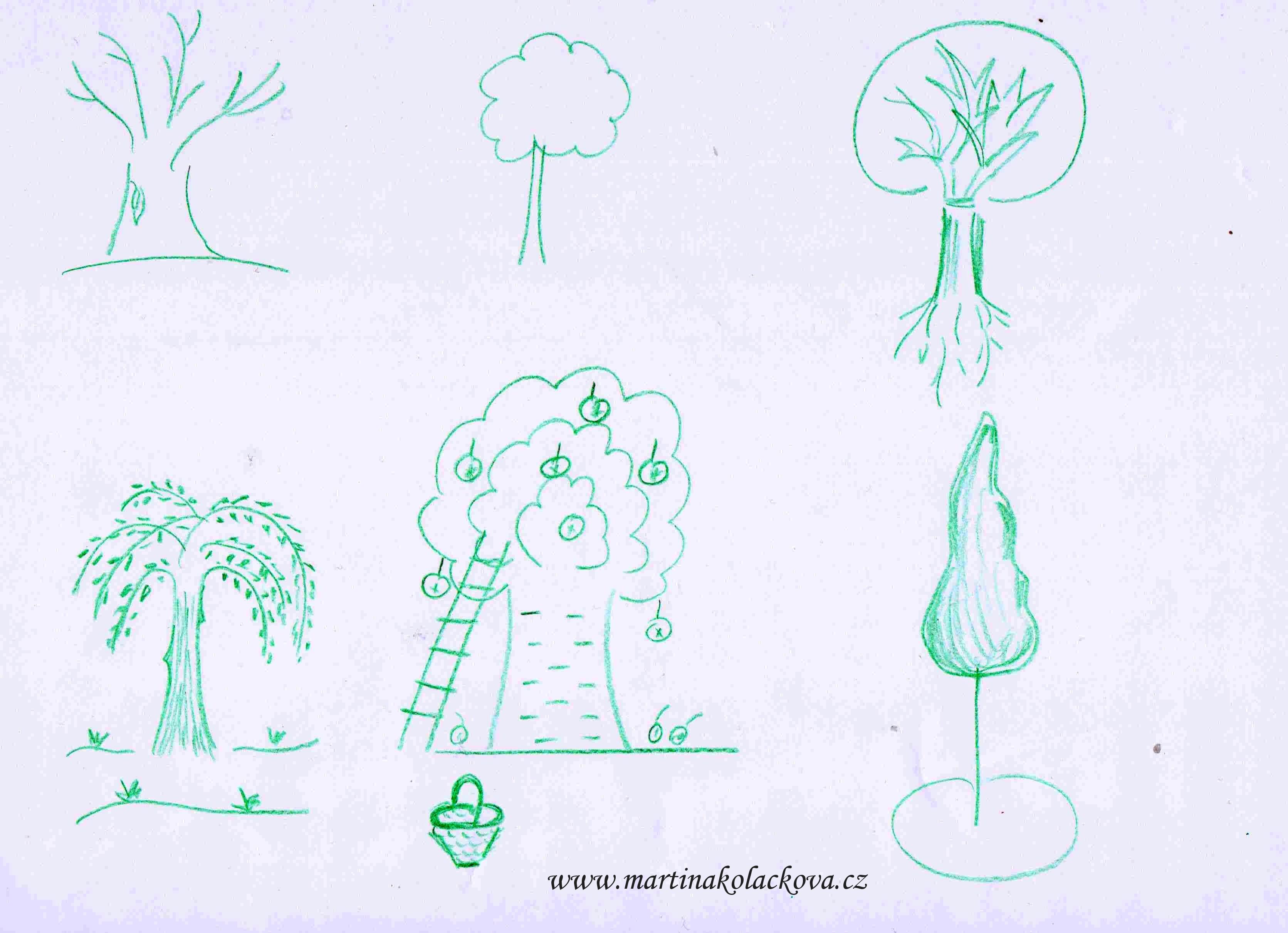 Nakreslete Libovolny Listnaty Strom A Uvidite Co Na Vas Prozradi
